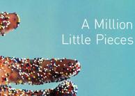 Essay million little pieces